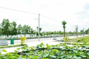 cat-tuong-phu-sinh-2016-11-09-89